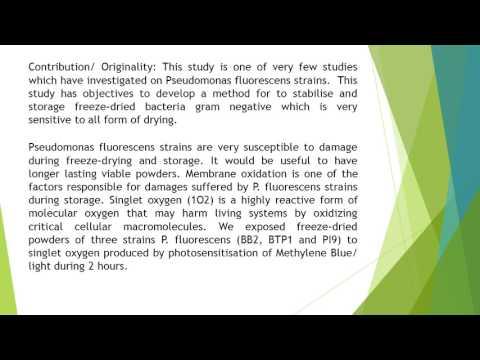 Accelerated Oxidation Test of Freeze Dried Pseudomonas Fluorescens BTP1, BB2 and PI9 Strains TAJAM 2