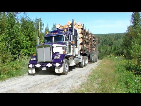 Kenworth W900L Ontario Logger