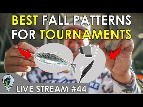 Best Tournament Patterns For Fall Bass Fishing | Fish The Moment Live Stream #44