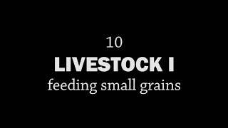 Rotationally Raised - Livestock I: Feeding Small Grains