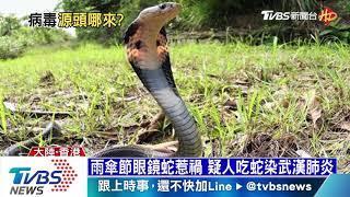 【十點不一樣】武漢肺炎病毒哪裡來 野味惹禍疑人吃蛇肉染病