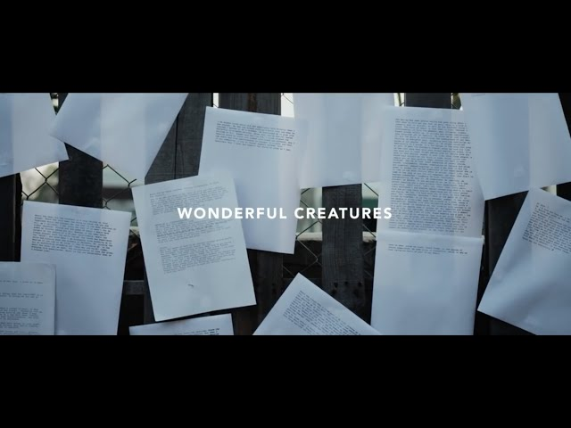 Devour The Day - Wonderful Creatures (Official Music Video)