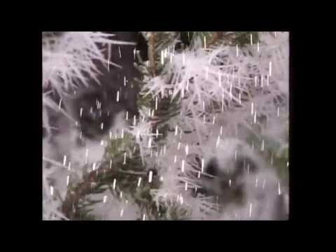 Rolf Zuckowski | Es schneit