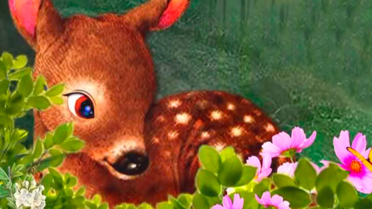 Life Of Deer - Android Gameplay - Baby Deer Simulator ...