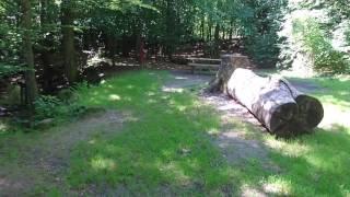 Primitiv overnatningsplads Rislebækken i Sollerup skov