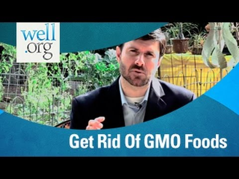 Get Rid Of GMO Foods | Well.org