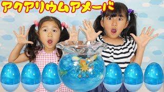 アクアリウムアメーバ☆スライムのサプライズエッグ?を開けてみると...himawari-CH thumbnail