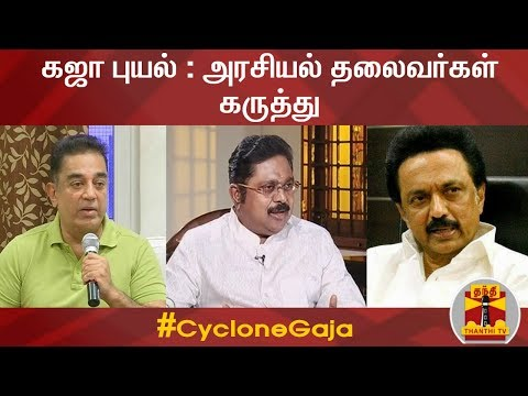 Politicians about Cyclone Gaja impact in TN