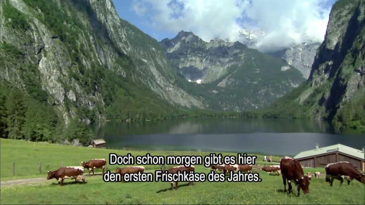 Is Video An Deutschland