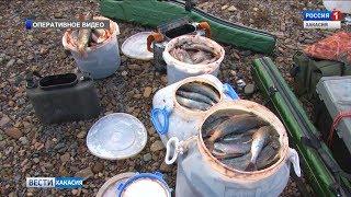 Уголовным делом грозит обернуться рыбалка для трех мужчин в урочище Култаш . 19.04.2019