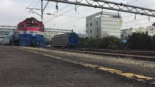 #D4371 회송 (단체관광열차) 신탄진-대전조 신탄진…