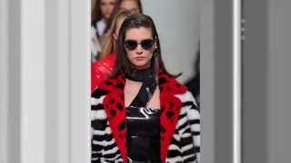 Versace Fall 2013 RTW   Runway Fashion Thumbnail