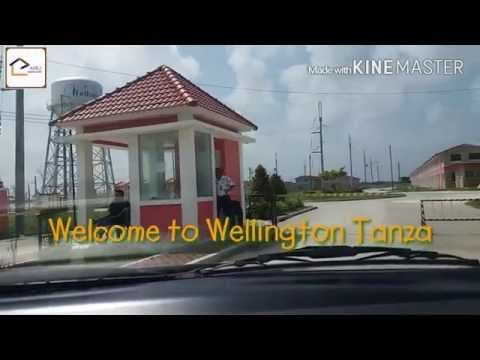 Wellington Tanza