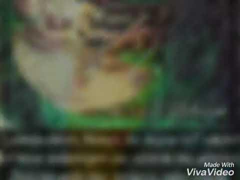Yeni dini video
