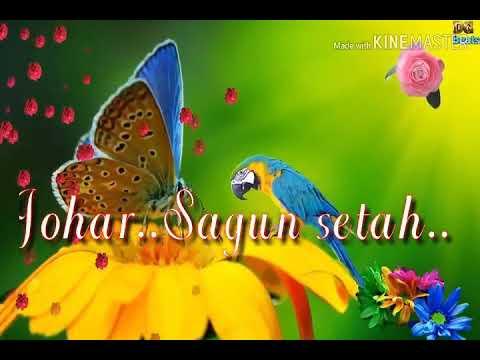 Santali Good Morning Song