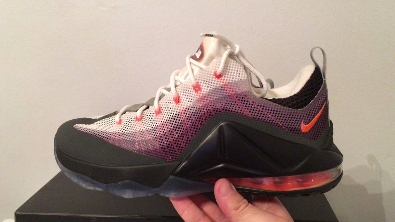 quality design 9b261 177a9 Nike LeBron 12 Low Air Max 95 Sneakers 812560 081