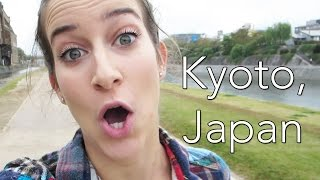 CRAZY IN KYOTO Thumbnail