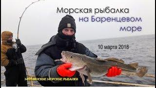 Морська рибалка на Баренцевому морі. Ура-губа. 10.03.2018 р.