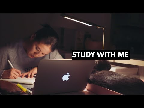 STUDY WITH ME with music   late night study session!