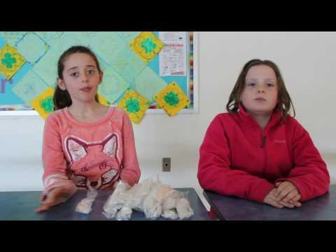 Leonardtown Elementary School BotWarriors - Trash Trek Presentation