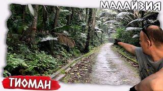 Остров Тиоман Тропики джунгли Малайзия