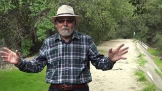 Does Jesus Possess Divinity?