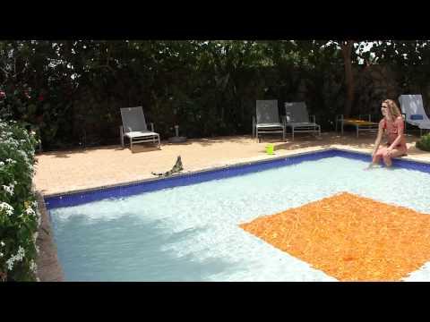 Curacao, Floris Suites hotel
