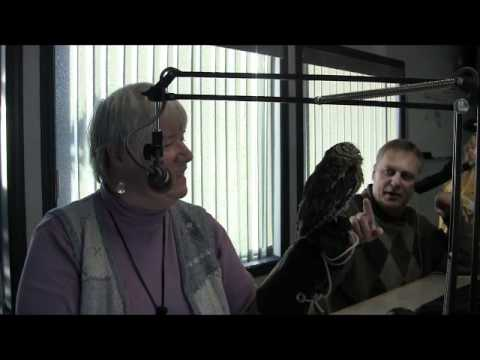 97.3 FM Eagle Radio Station visit
