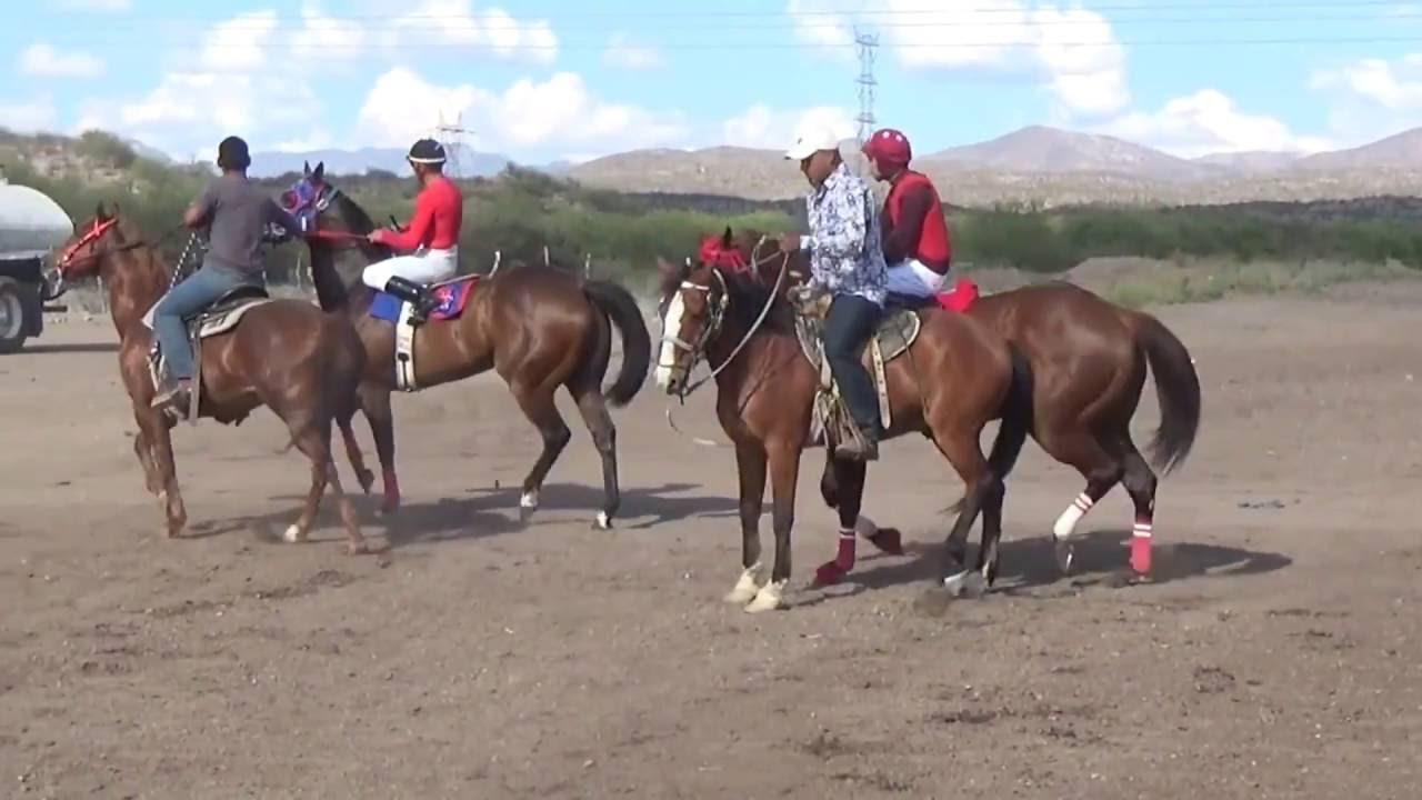 Carreras De Caballos En Los Hoyos De Cumpas, Sonora 29 De