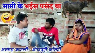 || COMEDY VIDEO || मामी के भैंस पसंद बा || Bhojpuri Comedy Video |MR Bhojpuriya