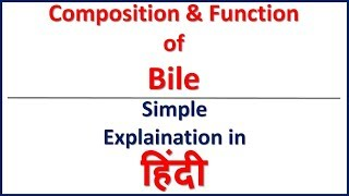 Composition & Functions of Bile simple explaination in Hindi | Bhushan Science