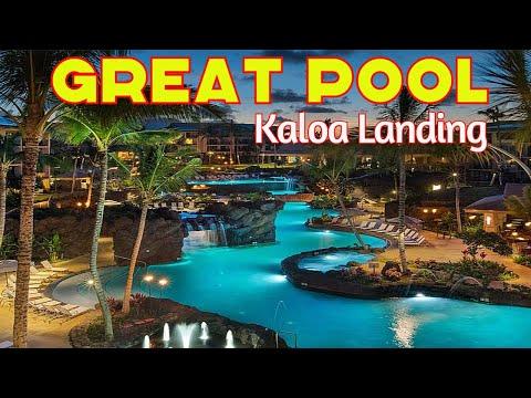 Kauai 2017 Day 1 - Early Morning!  &  Koloa Landing Resort. Sea Turtles