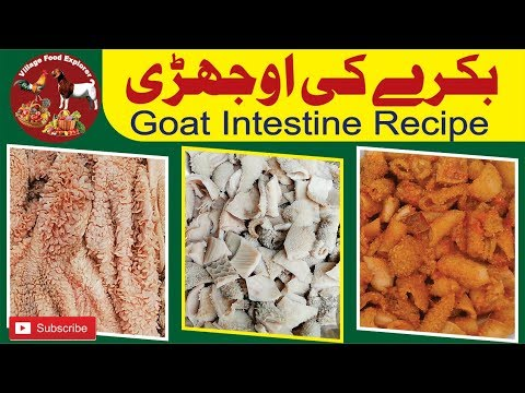 How To Clean And Cook Ojri, Goat Intestine Cleaning, mutton ojari recipe, By Village Food Explorer