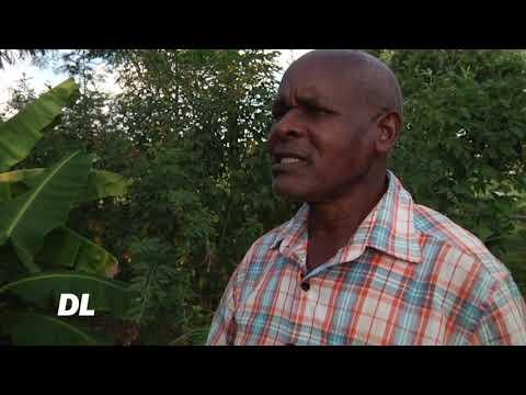 #dl-nzige-wavamia-mashamba-upya-kenya