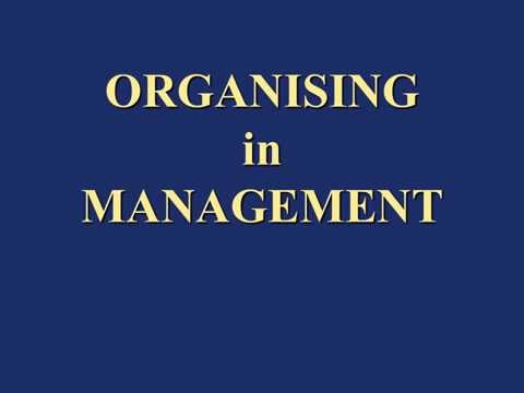 Organizing in Management