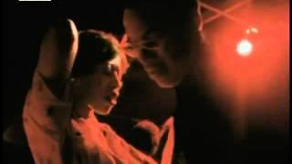 Disco Love Machine - Im Beat liegt die Sehnsucht