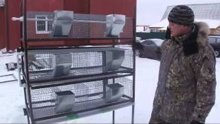Клетки для кроликов +7 915 756 12  63(Заказы принимаются на grosskrol@yandex.ru или по тел. +7 915 756 12 63. Отправка во все регионы России транспортными компани..., 2012-02-11T09:51:17.000Z)
