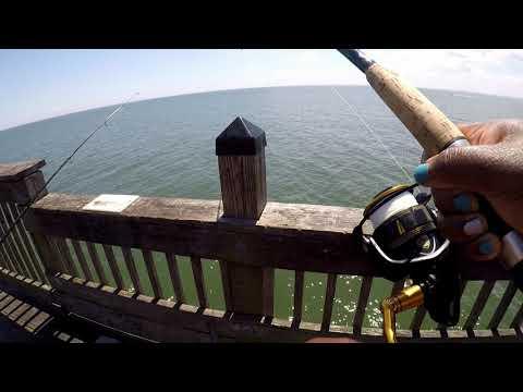 Fishing Buckroe Pier For My Birthday (Caught My PB)
