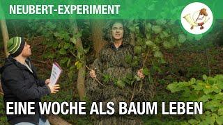 Das Neubert-Experiment: Eine Woche als Baum leben