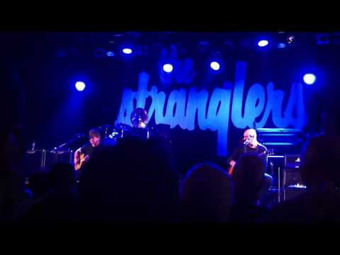 Stranglers Convention 2011 - Swine