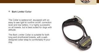 Buy The Most Effective Dog Barking Collars