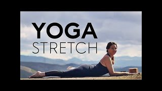 Yoga To Relax And Stretch (20 Min Practice) Fightmaster Yoga