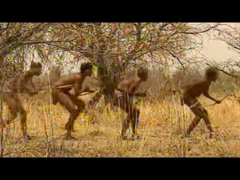 Hunting In Namibia - Ray Mears World Of Survival - BBC