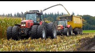 Mais hakselen Van Bakel Dairy 2013 - Jaguar 980, MF 8690, MF 7624, MF 7495, USA Equipment