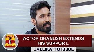Actor Dhanush Extends His Support Towards Jallikattu Issue   Thanthi Tv