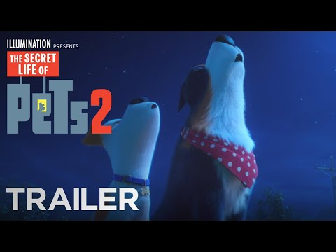 Cool Beans - Movie Review:  The Secret Life of Pets 2