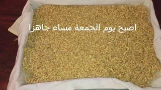 كيفية تحضير جنين القمح بالمنزل مع ذكر فوائده الكتيرة