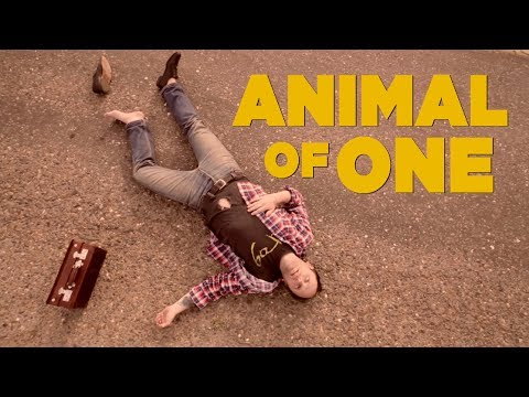 The Fresh & Onlys - Animal of One [OFFICIAL VIDEO]