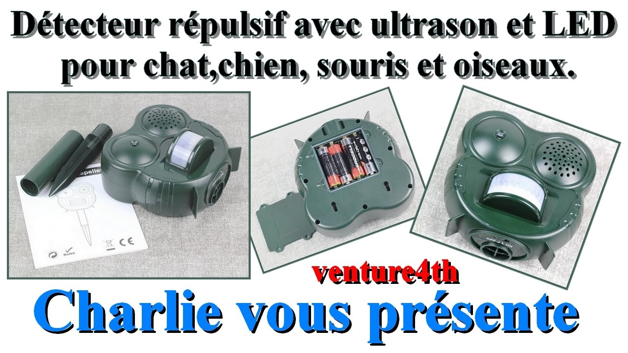 Un tr s efficace d tecteur r pulsif avec ultrason et led for Repulsif chat exterieur ultrason