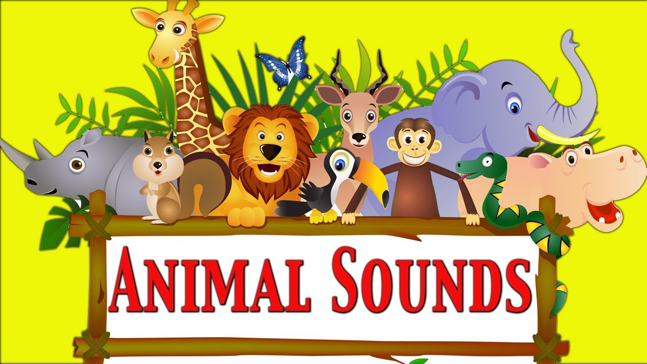 Learn Domestic Animals Sounds For Children - YouTube